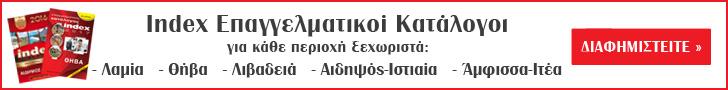 Index Επαγγελματικοί Κατάλογοι banner