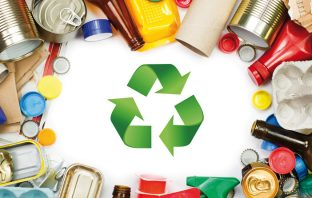 Ανακύκλωση-Μπαστούνας-Ιτέα-Ρεπορτάζ-Αγορά