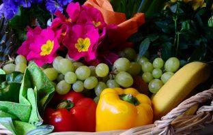 Ξυνός Τροφοδοσία Φρούτα Λαχανικά