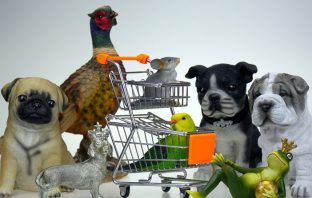 pet shop Ρεπορτάζ Αγοράς